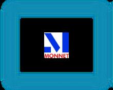Monnet Ispat & Energy Limited